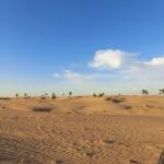 Wüste bei Tag